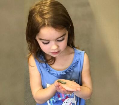 a kid holding a caterpillar