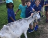 kids petting a goat