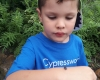 kid looking at insect